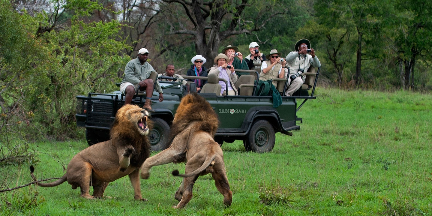 The Basic Guide Luxury African Safari Tour